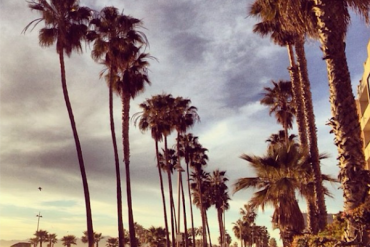 Venice Beach, instagram-pslilyboutique, LA fashion blogger, california, Travel, lifestyle