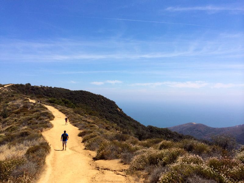 Los Liones Canyon hiking trail, Los Angeles | PSLily Boutique