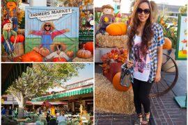 Instagram @pslilyboutique, LA fashion blogger, blog, fall fashion, plaid shirt, leggings, fashionista