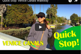 instagram-pslilyboutique-los-angeles-fashion-blogger-quick-stop-venice-canals-walkway-video-youtube-1-28-16